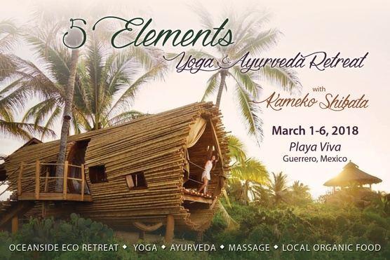 5 Elements: Ayurveda and Yoga Retreat 2018