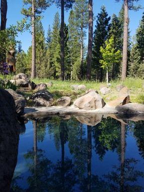 Sierra Hot Springs Springtime Yoga and Meditation Retreat