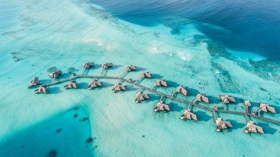 Maldives Rejuvenation