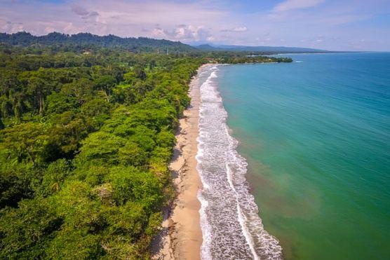 Costa Rica Soul Revival