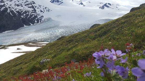 Alaska: Kenai Women's Adventure June 2021