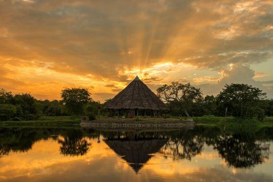 Sri Lanka Yoga + Culture Eco-Retreat
