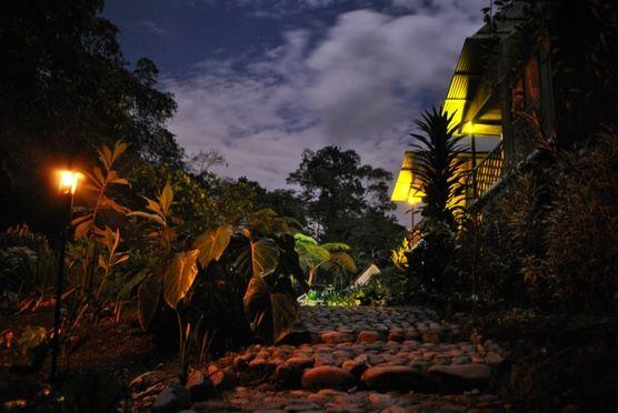 Epic 4-Day Ecuador Yoga Trip! Andes & Amazon