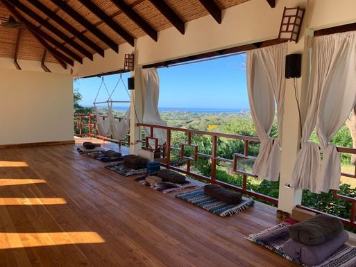 2020 Foresight - Costa Rica: Align with Your Innate Wisdom