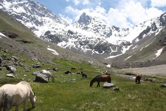 PRIVATE Trekking & Glacier
