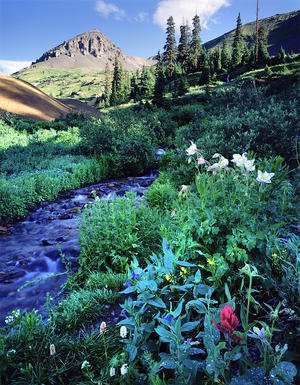Ouray, CO 4D/3N