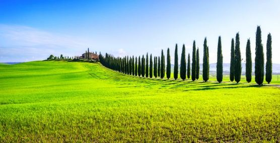10-day Lovely Italy: Rome and Tuscany, self-drive