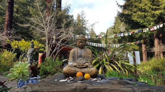 Yoga and Meditation Retreat, Santa Cruz Mountains