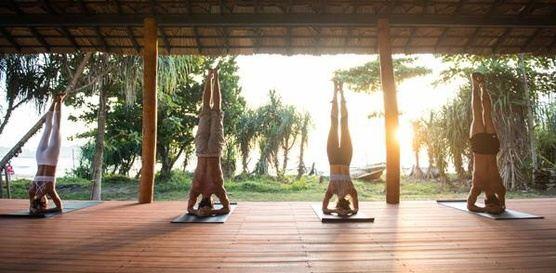 Jnana FLow Yoga Retreat