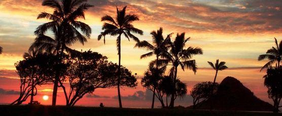 Grand Princess Hawaii for New Year's