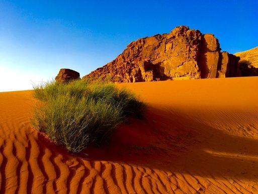 Journey to Petra: Yoga Adventure - Jordan 2017