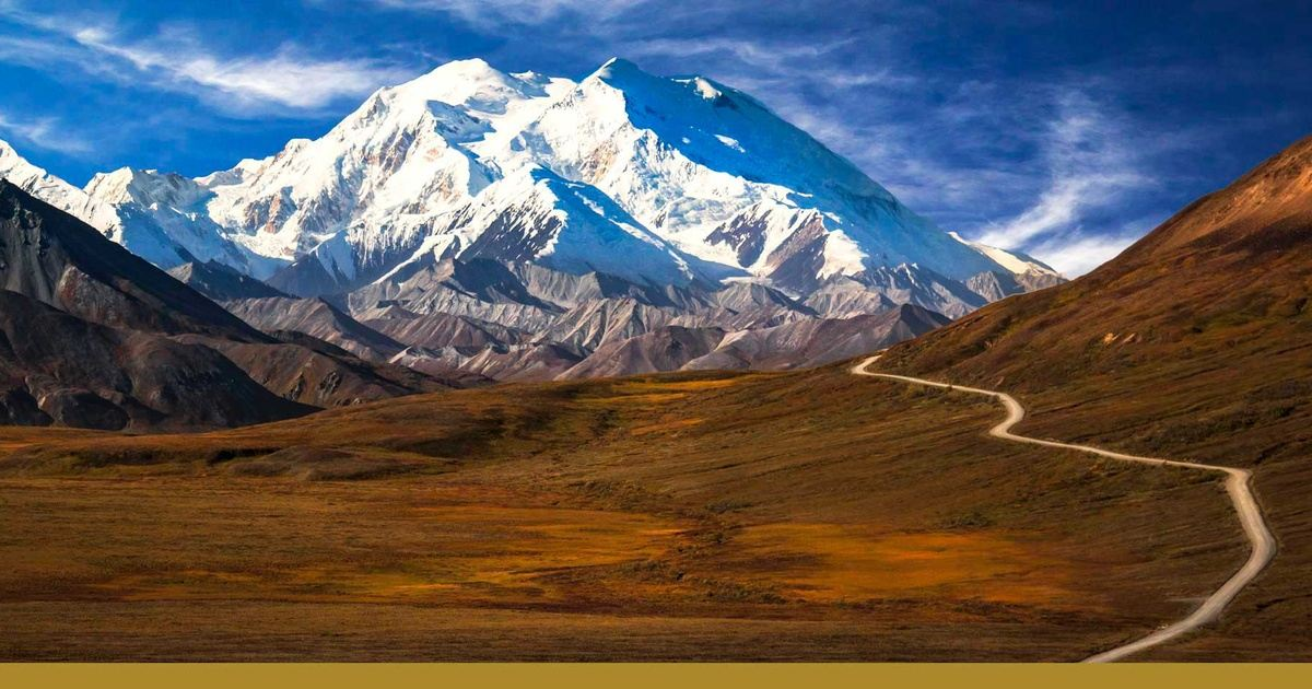Golden Princess Alaska In Denali National Park And Preserve Ak Usa