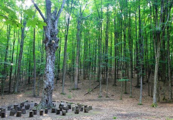Catskill's R&R Retreat : Finding Balance w/ Body, Mind and Spirit