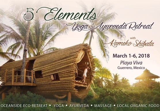 5 Elements: Ayurveda and Yoga Retreat 2018