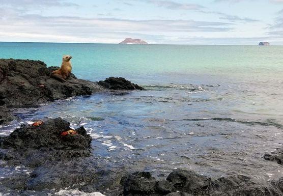 Women's Galapagos Island Explorer