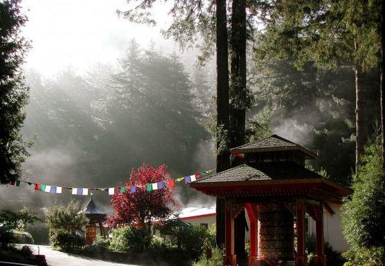 Yoga, hiking & meditation Fall retreat
