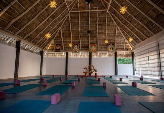 Yoga, Meditation, and Beach Retreat