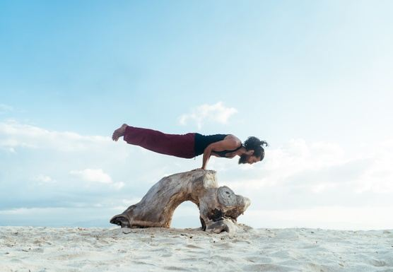 200 Hrs Hatha/Vinyasa Yoga Teacher Training - February 2020