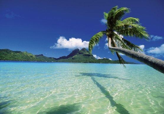 Wonders of Riviera Maya Culinary and Adventure Tour