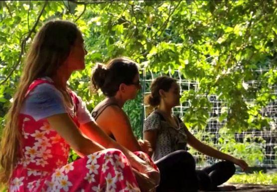 Heal and Transform. Privet retreat
