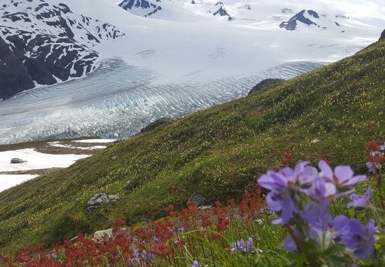 Alaska: Kenai Women's Adventure June 2020