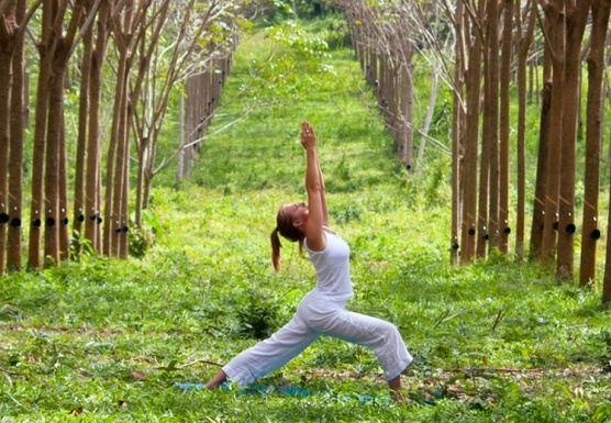 Health & Detox Yoga Dance Thai Massage Retreat Getaway Thailand