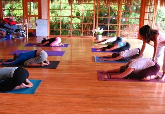 29-Day 200-Hour Holistic Yoga Teacher Training Program