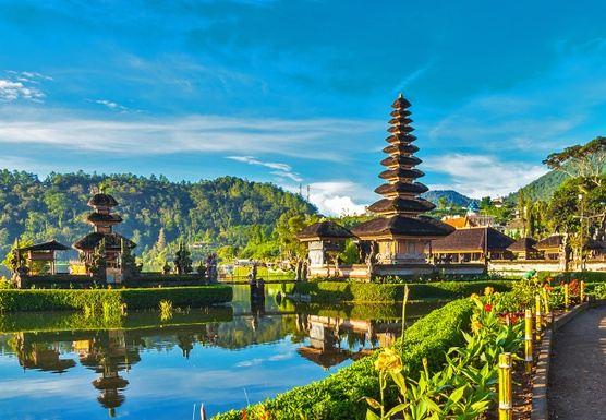 Vegan Apprenticeship The Real Magic of Ubud Bali 6 days