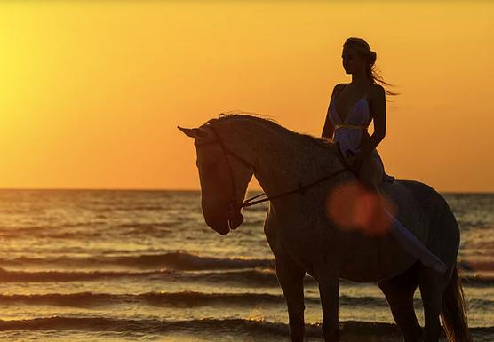 Costa Rica Horseback Riding Retreat (January 2020)