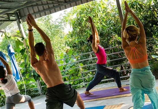 Hatha, Vinyasa and Multimedia 200 hours TTC
