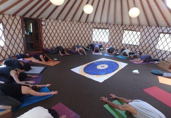Alchemize & Awaken: A Day Long Yoga Retreat