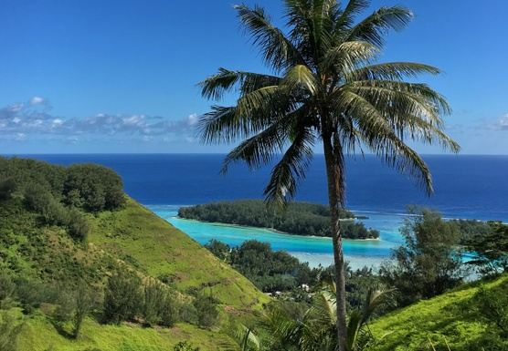 Wellness, Adventure, Yoga - Tahiti