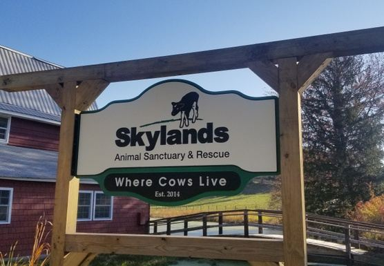 Skylands Animal Sanctuary & Rescue Benefit