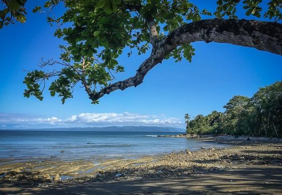8 Days Forest & Ocean Front Yoga Adventure in Costa Rica