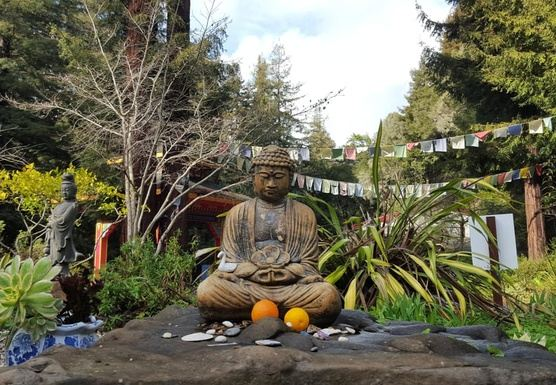 Yoga and Meditation Retreat, Santa Cruz Mountains