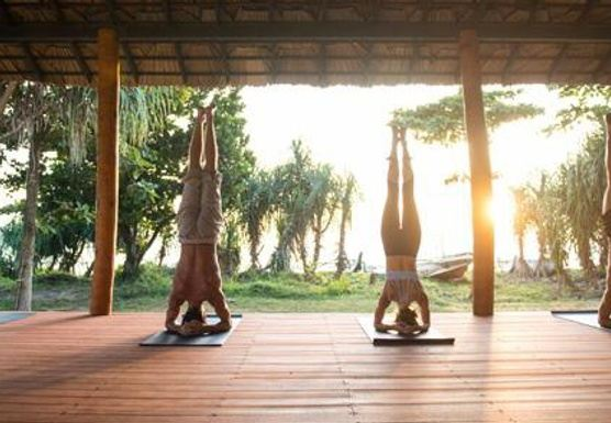 Jnana FLow Yoga Retreat