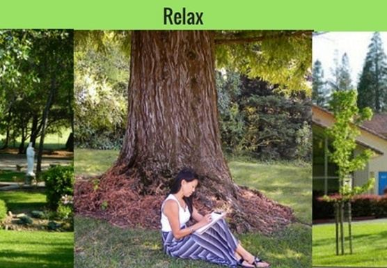 UNPLUG- One Day Getaway Retreats to Reset Your Life!