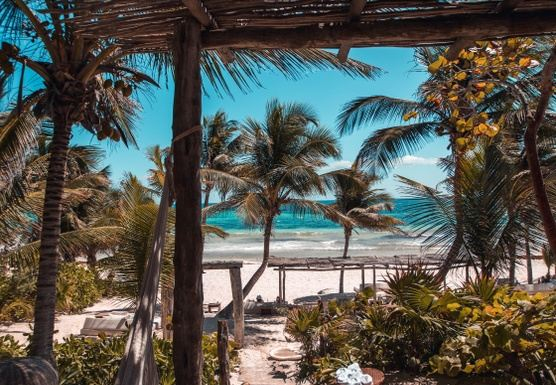 Tulum, Mexico 2020: Perched in Paradise