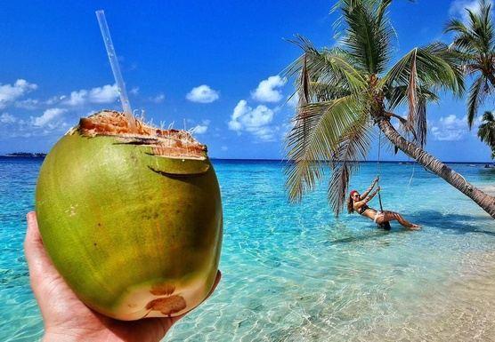 Spring break Bocas
