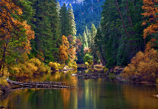 Autumn Gorgeous: Yosemite Yoga Retreat