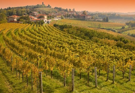 Slovenia Food, Wine, and Cultural Tour