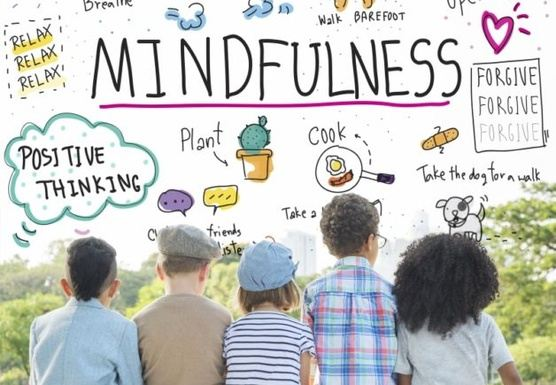 Mindfulness Teacher Training Level 1