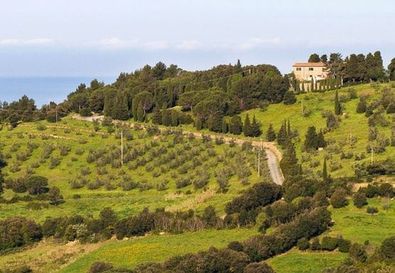 8 Days Transformational Awareness Meditation and Yoga Retreat in Tuscany, Italy