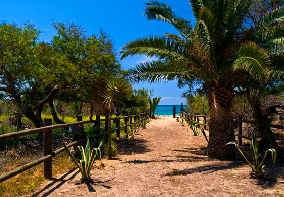 YOGA & WALKING RETREAT (OCTOBER 15) IN ZAHORA BEACH, CADIZ, SPAIN