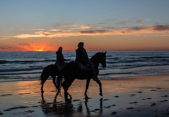 YOGA & HORSEBACK RIDING HOLIDAY BY THE BEACH IN ANDALUSIA, SPAIN