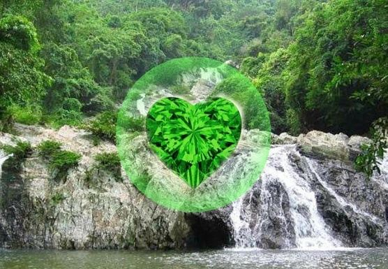 Journey to the Emerald Heart with Alison Sinatra & Miguel Mendez