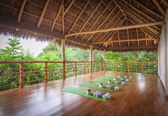 Return 2 Balance - Creative Flow Yoga & Meditation Retreat