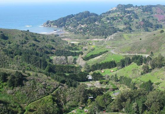 Embracing Ease: Daylong Retreat at Green Gulch Farm Zen Center