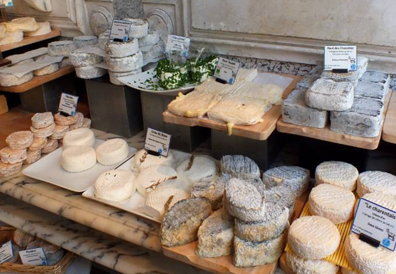 France: Southern Gastronomy (Wine & Cheese)