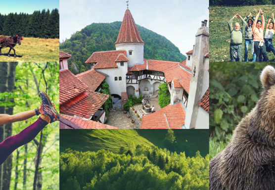 Transylvania Wild Side - Discovery, Hiking & Yoga trip